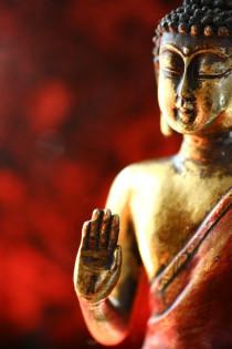 Chinesische Medizin, Disharmoniesyndrom, individuelle Therapie
